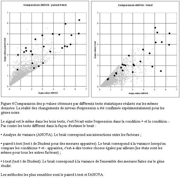 statistiques seconde cours pdf